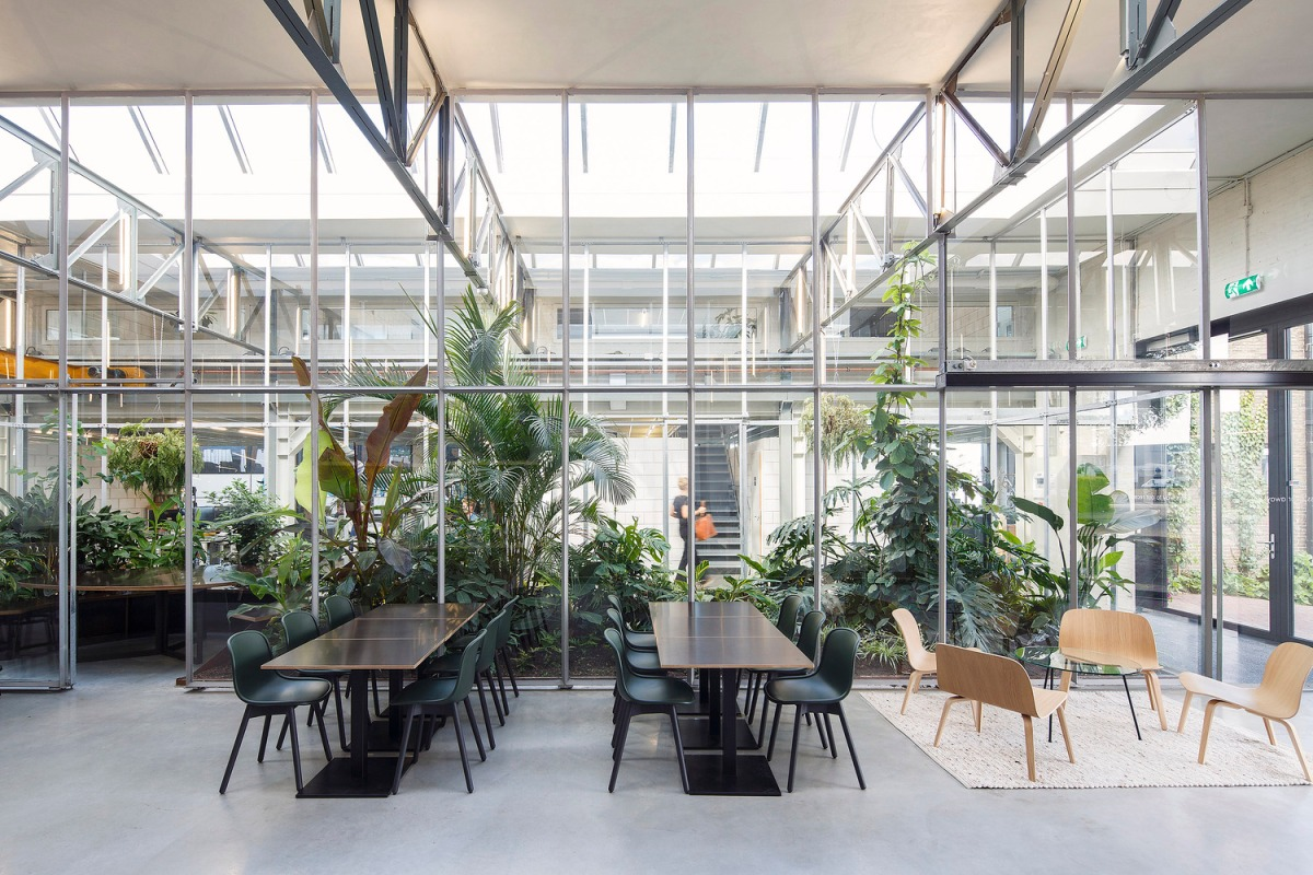 Das grüne Büro ist kein Trend, sondern unfassbar gesund 🍏
